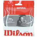 Wilson Natural Gut Tennis Strings 17G