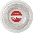 Wilson Stamina Tennis Strings Reel 16G