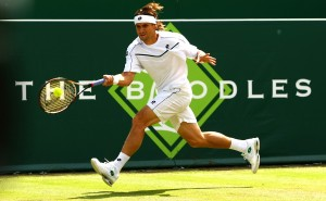 2011 The Boodles Champion David Ferrer 300x185 The Boodles Challenge – A Look at Britain's most Exclusive Grass Court Tournament