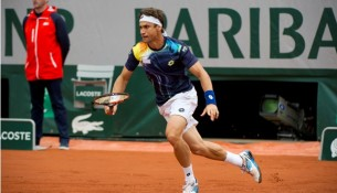 David Ferrer French Open 2014