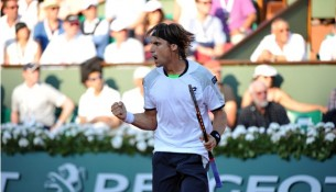 David Ferrer French Open