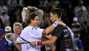 Novak Djokovic vs David Ferrer