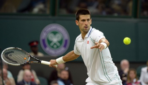 novak djokovic wimbledon 2013 final